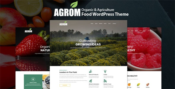 Best Organic & Agriculture Food WordPress Theme