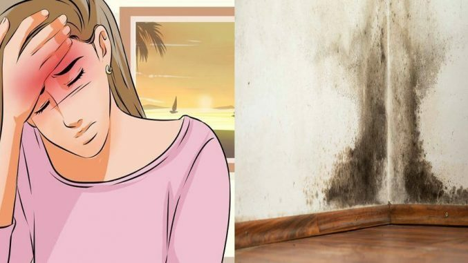 14 Early Warning Signs Of Mold Toxicity Everyone Should Know (Millions Are Exposed Every Day)
