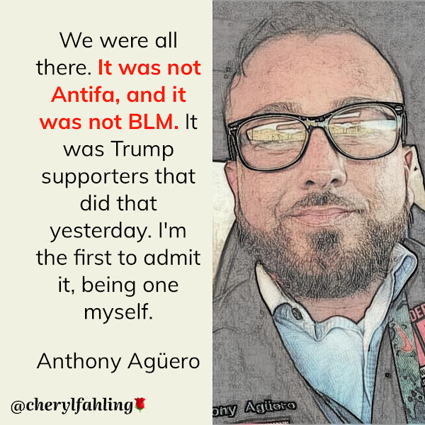 We were all there. It was not Antifa, and it was not BLM. It was Trump supporters that did that yesterday. I'm the first to admit it, being one myself. — Anthony Agüero