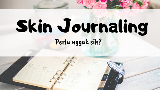how to start a skin journaling