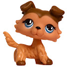 Littlest Pet Shop Singles Collie (#893) Pet