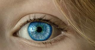 fungsi-saraf-optik-pada-mata-dan-fungsi-otot-siliaris