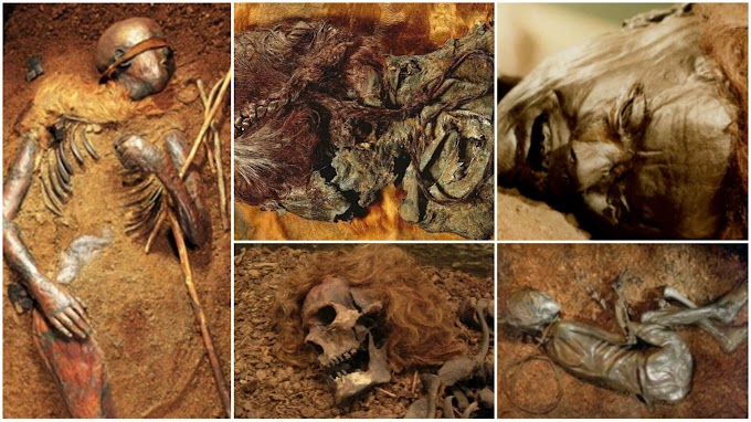 Europe's Famed Bog Bodies Are Starting to Reveal Their Secrets.