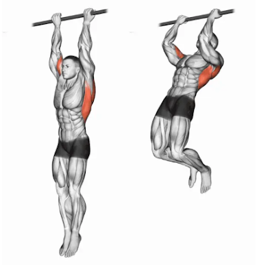 chin up for biceps exercise