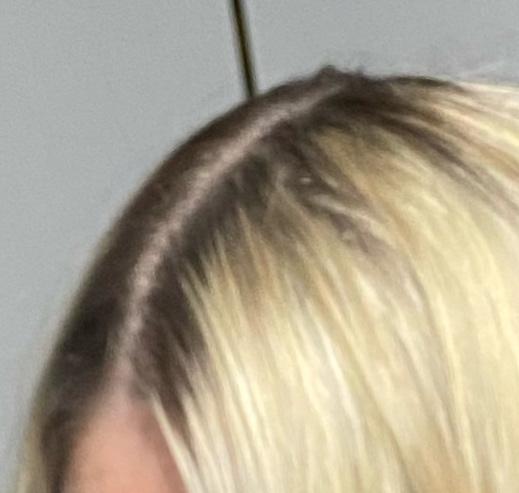 Hellblonde haare dunkelblond tönen