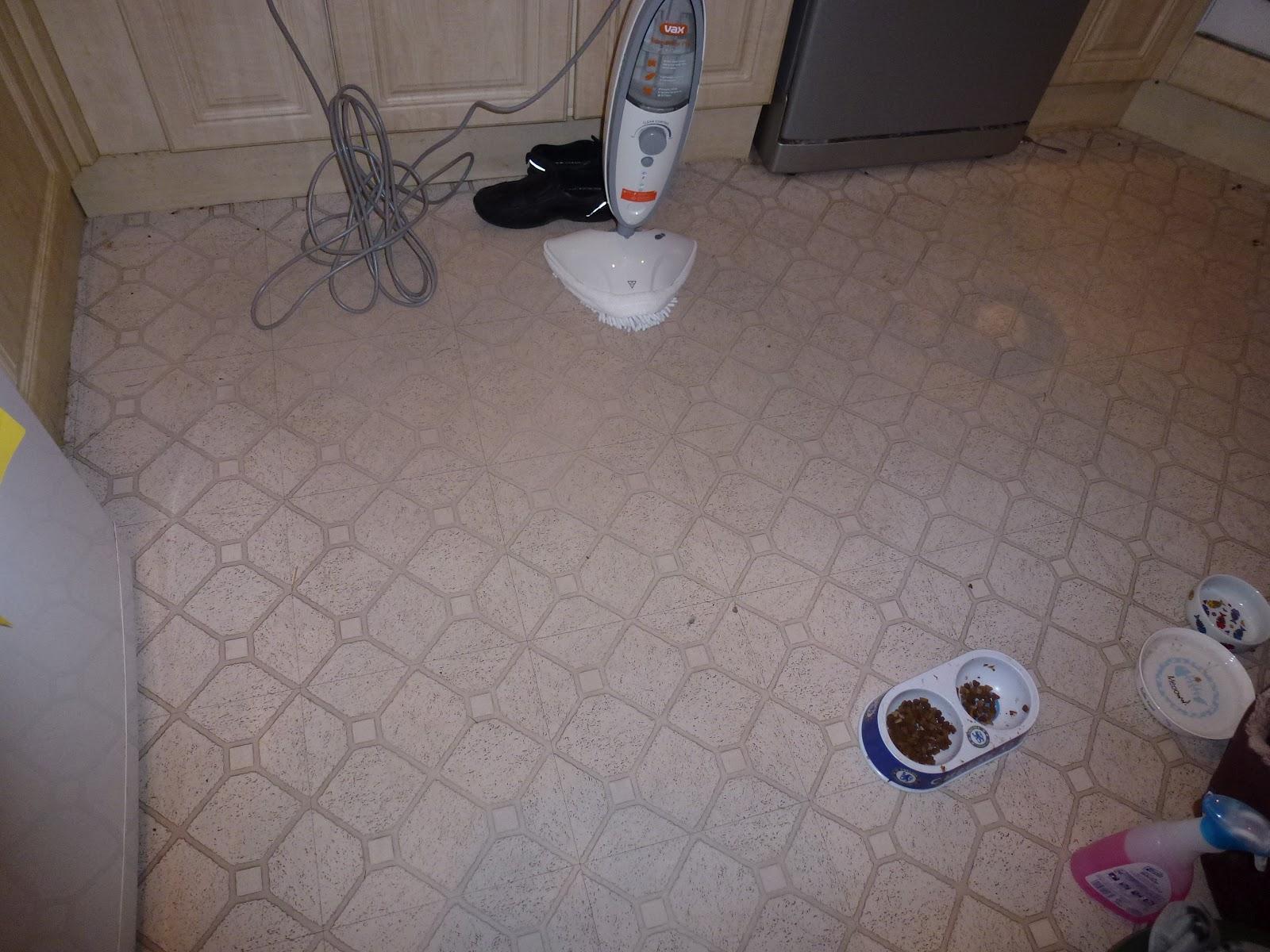 Life Ninja Killer Cat and Everything Else  Vax S2ST Bare Floor Pro steam cleaner