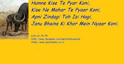 Haryanvi Whatsapp Status.png