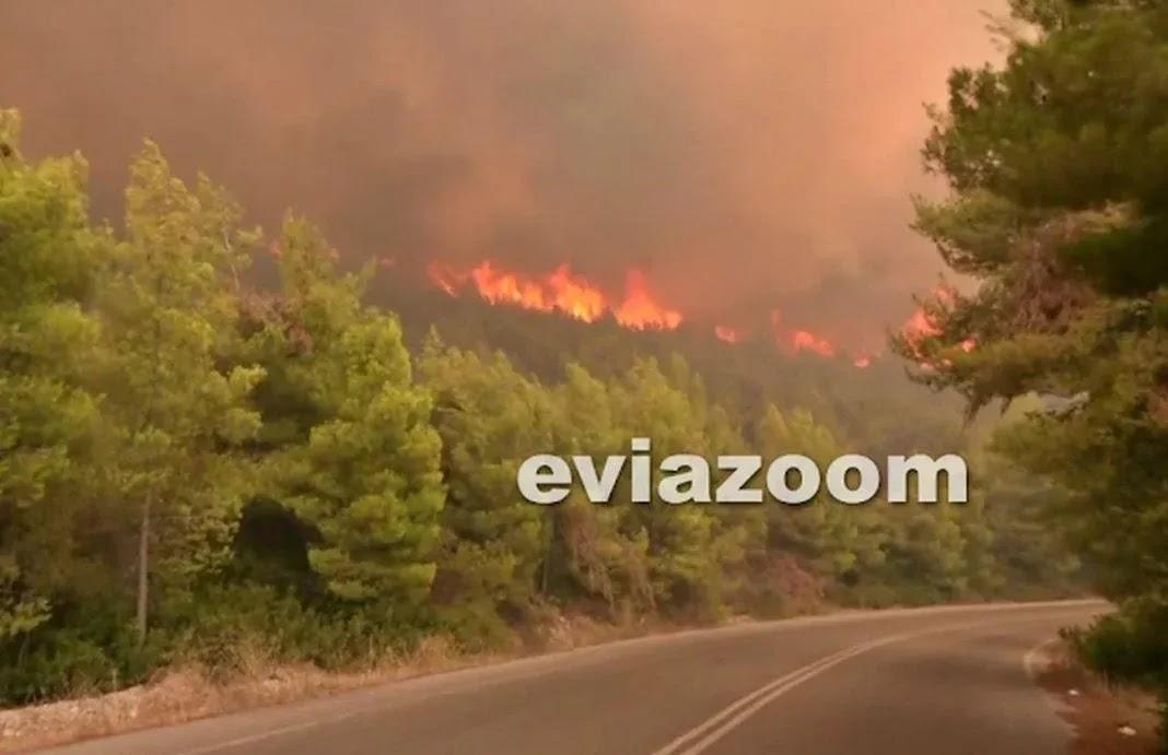 Εύβοια – Στις φλόγες Βασιλικά, Μηλιές και Βουτάς (video)