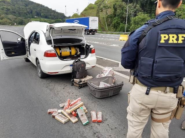 PRF prende mulher que transportava Maconha