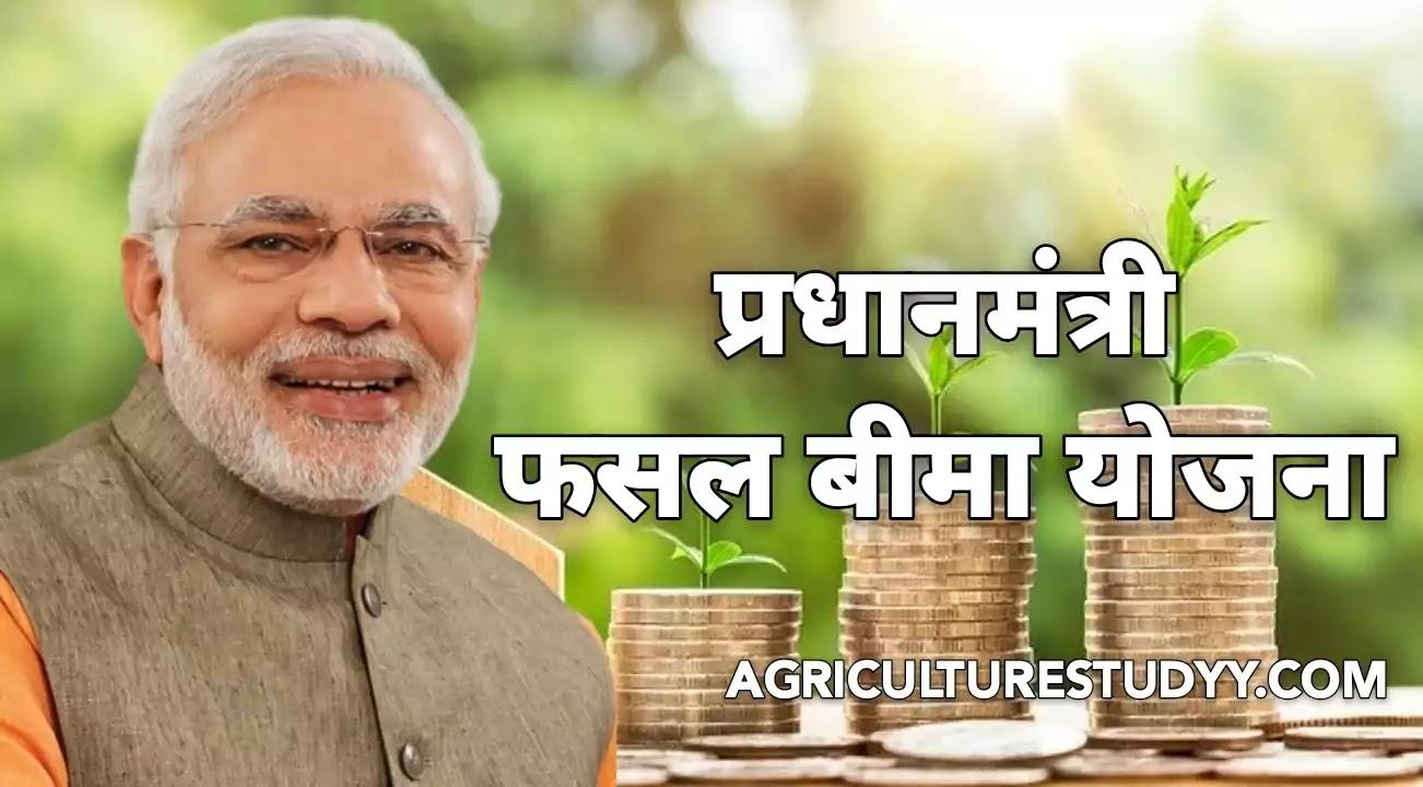 प्रधानमन्त्री फसल बीमा योजना 2020 (Pradhan Mantri Fasal Bima Yojana 2020)