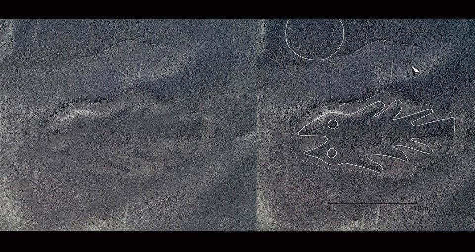 clínica de próstata de pescado de irlanda gardas