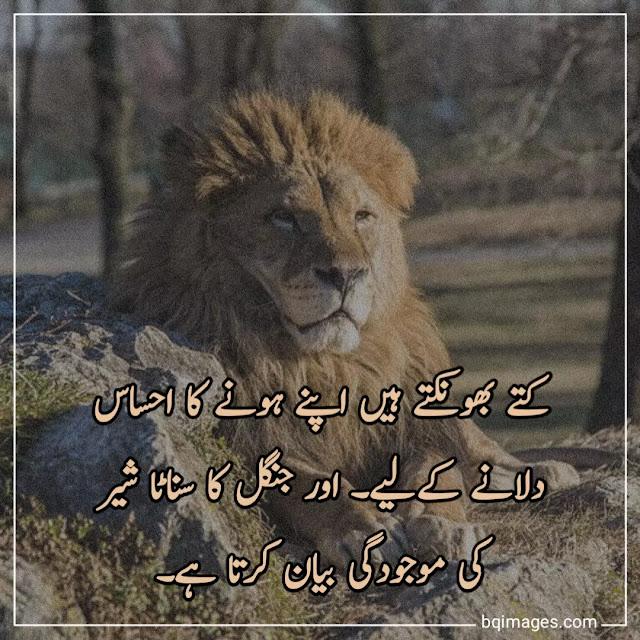 amazing quotes in urdu