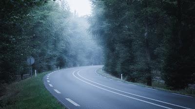 Wallpaper road, forest, grass, trees, fog