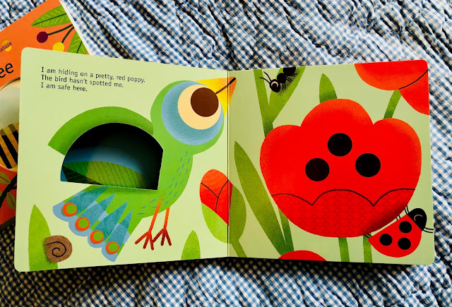 best board books for preschoolers