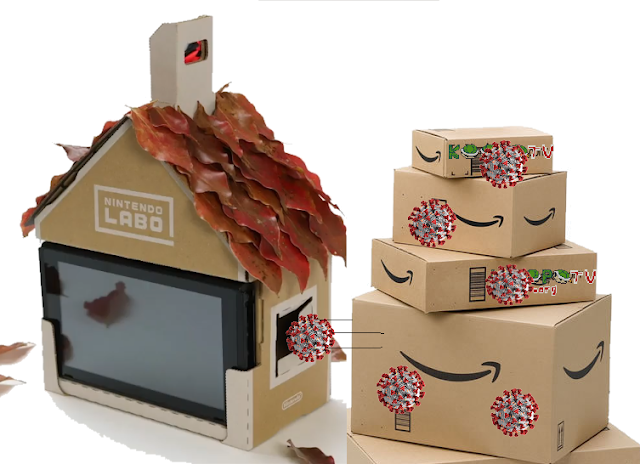 Coronavirus COVID-19 cardboard boxes outside house shipping 24 hours Nintendo Labo