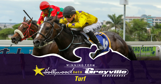 Greyville horse racing betting online guide to horse racing betting rules
