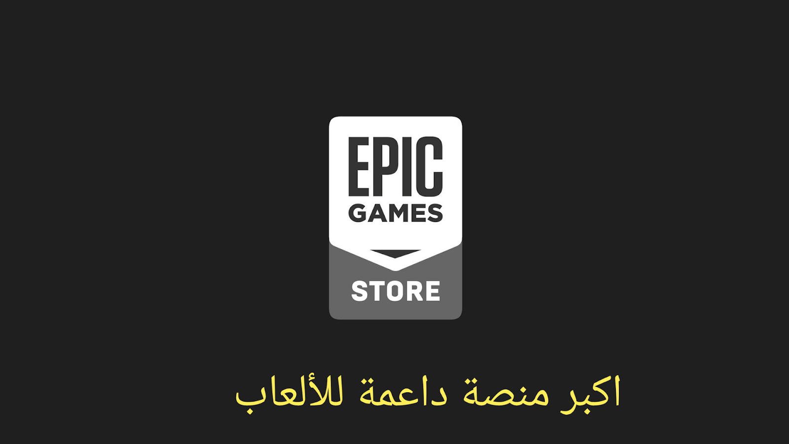 Epic Games  Fortnite العاب