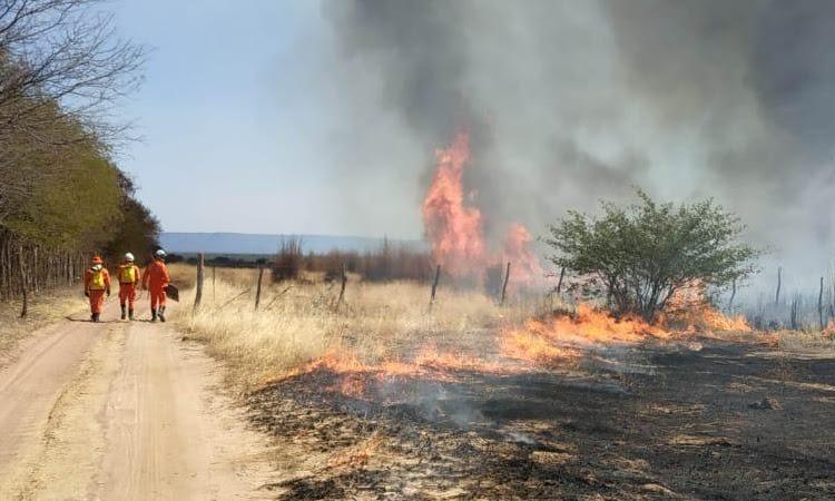 17º GBM atua para controlar incêndio que atinge vegetação na zona rural de Ibotirama