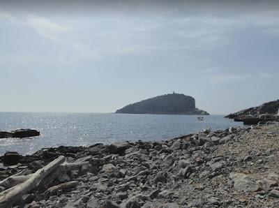 L'isola del Tino vista dal Pozzale