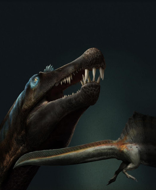Dino teeth research prove giant predatory dinosaur lived in water