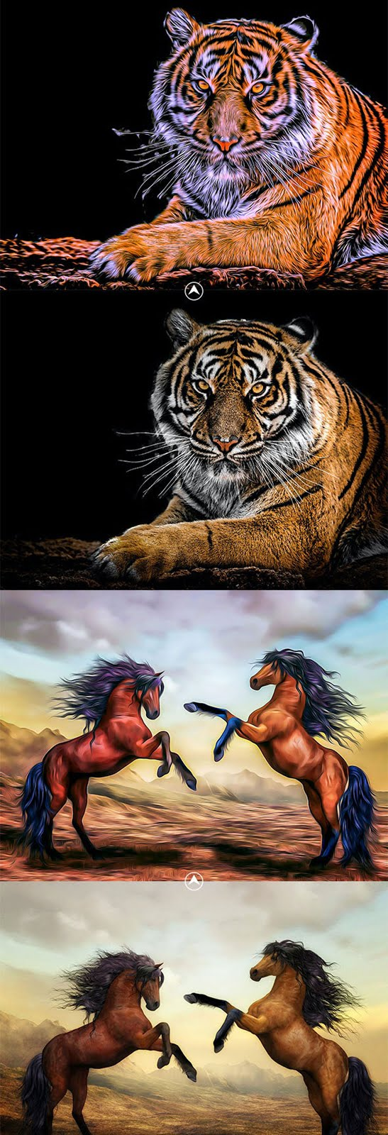 Animal Oil Painting Photoshop Action 26608753 Free Download