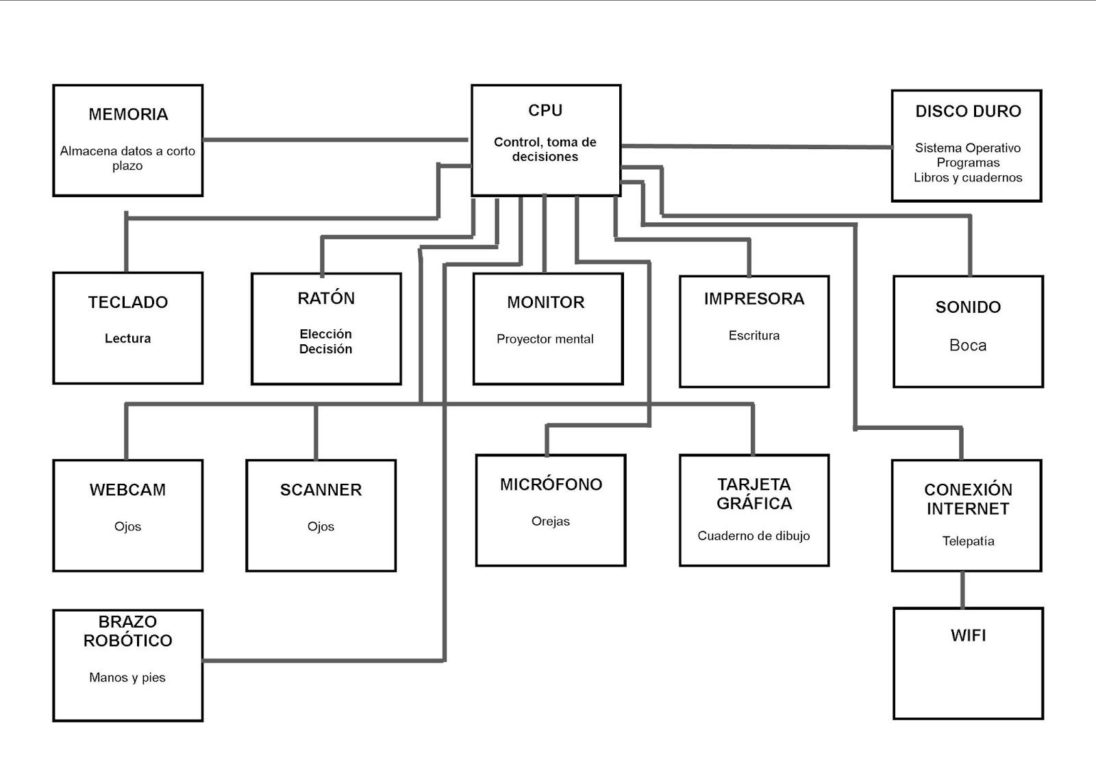 Increíble Diagrama De La Anatomía Boca Inspiración - Imágenes de ...