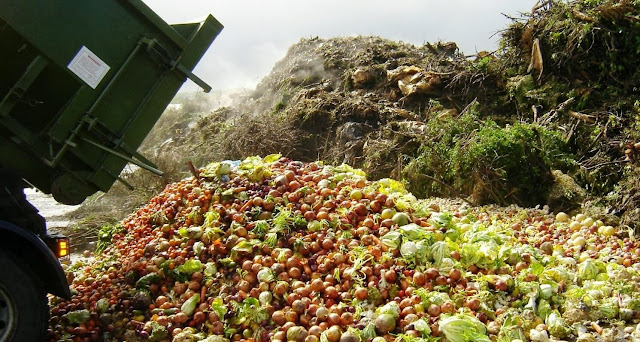 Study More Than One Third Of Food Are Being Waste, To Prevent Starvation Need To Save It