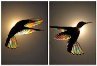 connaissance de soi, être bien, bien-être, bien dans sa vie, spiritualité, développement personnel, alignement, cocréation, le pouvoir de l'intention, multipotentiels, multipotentialité, explorateur