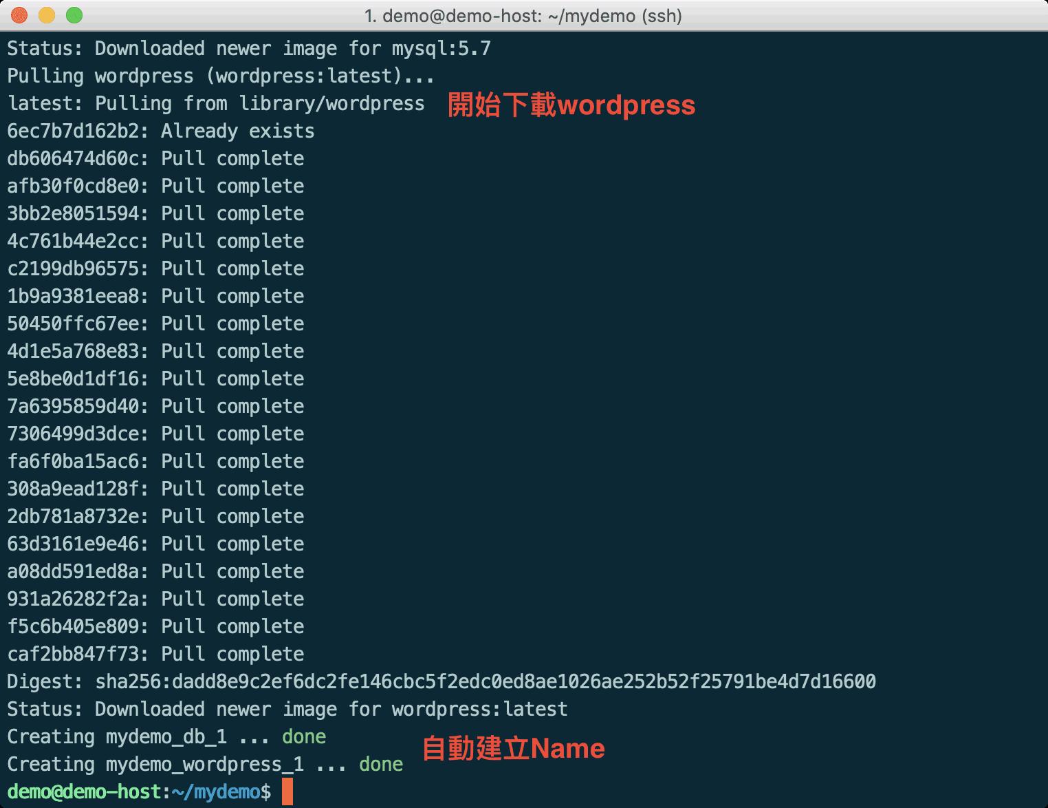 Docker Compose 拉取 WordPress Image