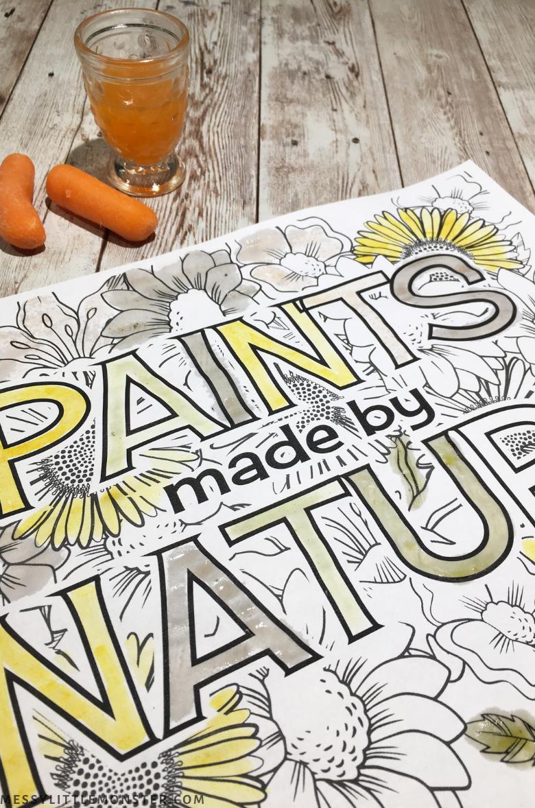 homemade nature paint recipe