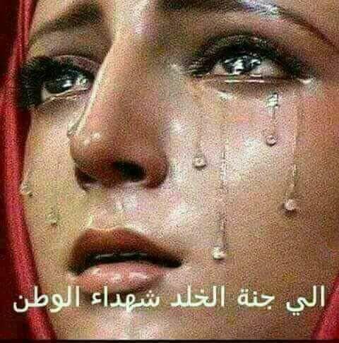 شهداء مصر