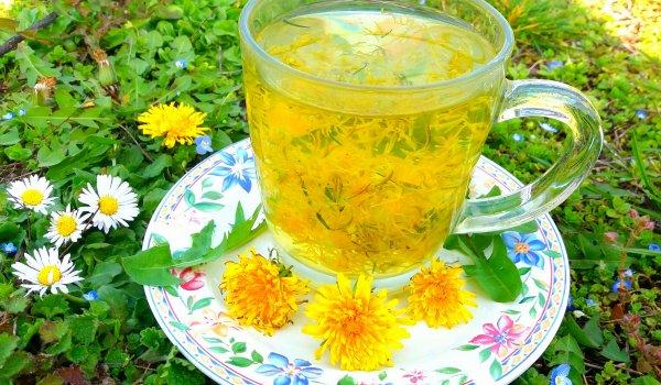 Варенье, чай и лечебное масло из одуванчиков: 3 рецепта для вашего здоровья