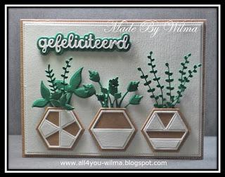 Een felicitatiekaartje met zeshoekige bloempotten met daarin allemaal groene plantjes. A congratulatory card with hexagonal flowerpots containing all kinds of green plants.