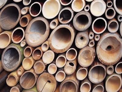 pemanfaatan bambu untuk kehidupan manusia