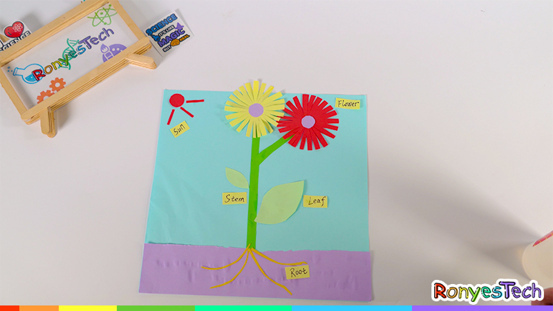 Grow an Origami Plant Craft Instruction Step4