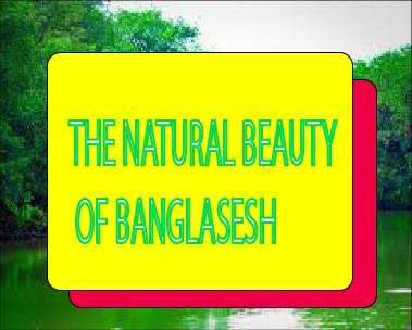 The Natural Beauty of Bangladesh Composition - short composition