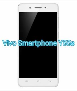 Vivo Smartphone Y55s