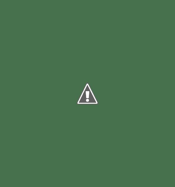 Skullcandy Ink'd Wireless in-Earphone