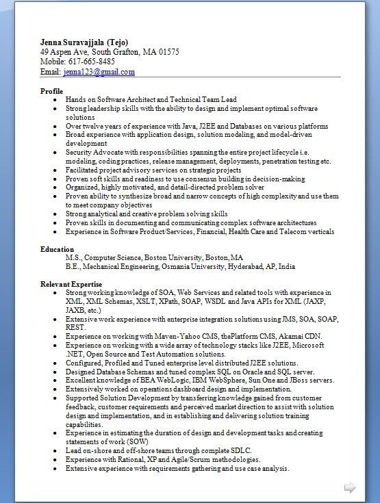 Good Software Engineer Resume Format in Word Free Download