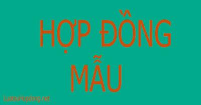 hop-dong-moi-gioi-thuong-mai