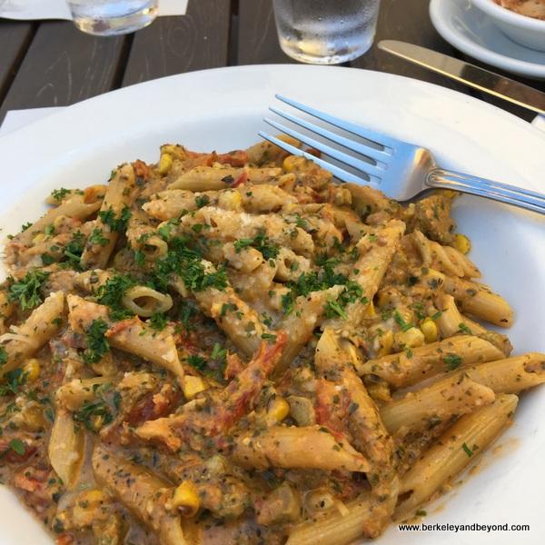 penne con pollo at Bella Siena restaurant in Benicia, California