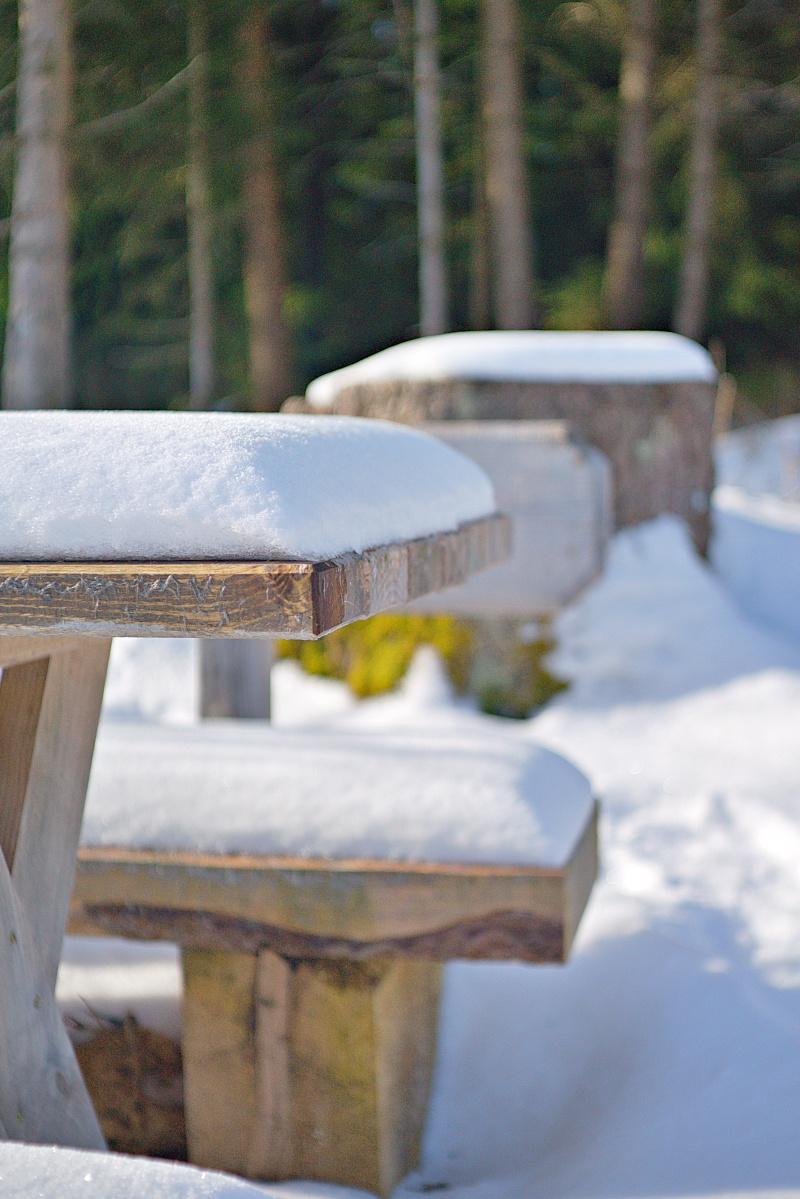 #049 Tessar f2.8 50mm - Schnee in Diepholz (1)