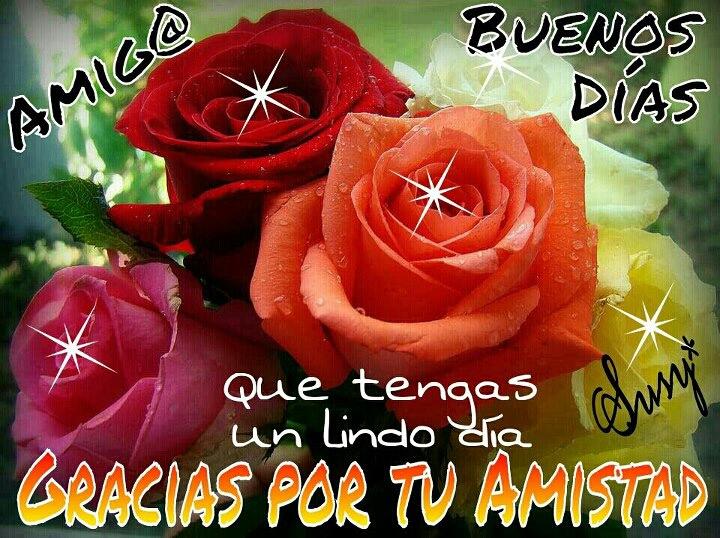 Frases De Amor Con Imagenes De Buenos Dia: Imagenes Buenos Dias Buenas Tardes Buenas Noches Detalles
