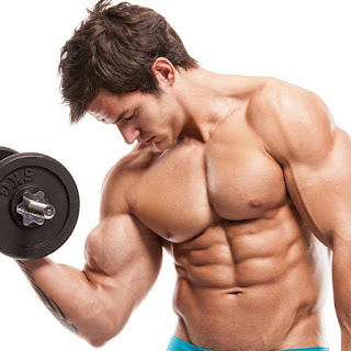 lean mass steroids for sale