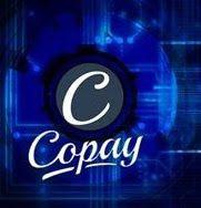 Copay Wallet Image