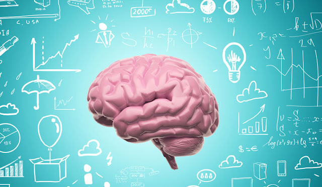 الإمارات تطلق أول جامعة في العالم للذكاء الاصطناعي مع منح دراسية بنسبة 100٪