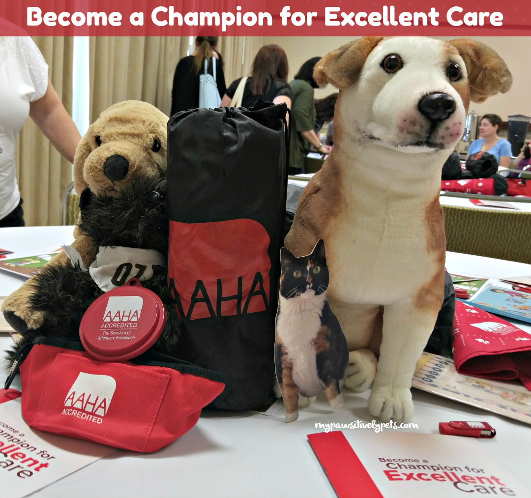 Excellent Care In A Kind Conservative: Become A Champion For Excellent Care For Your Pet