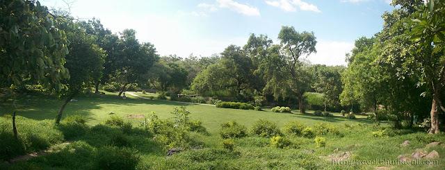 buddha garden park