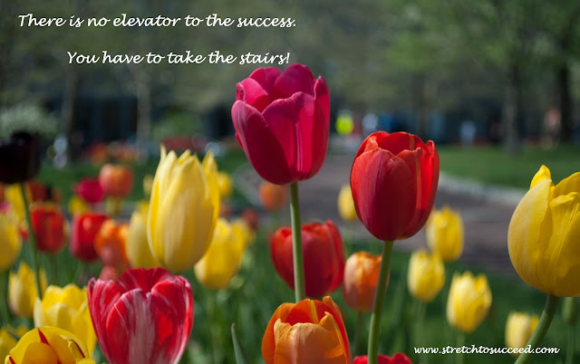 There is no elevator to the success. You have to take the stairs