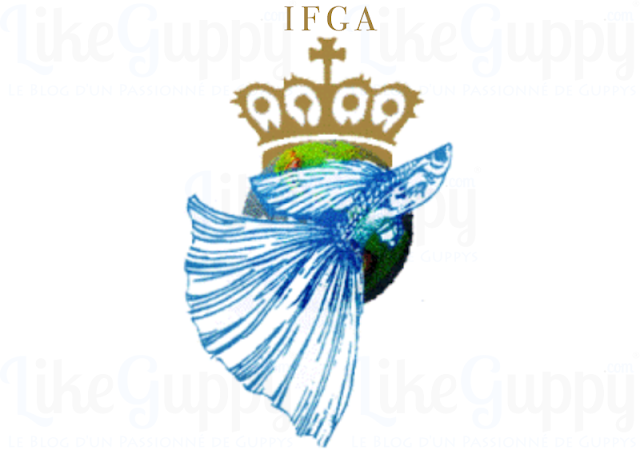 IFGA-Internationale-Fantaisie-Guppy-Association
